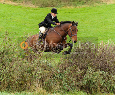 Sara Hercock - The Cottesmore Hunt at Tilton on the Hill, 9-11-13