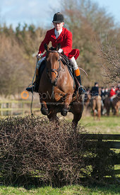 Whipper-in Robert Medcalf jumping the first hedge