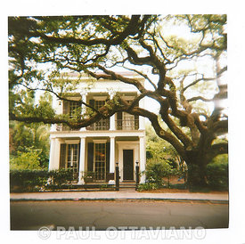 Garden District Old Growth