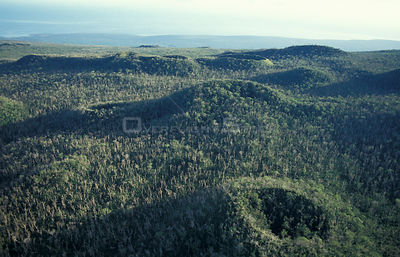 Aerial view of extinct volcano craters covered with forest. Savaii, Western Samoa Polynesia