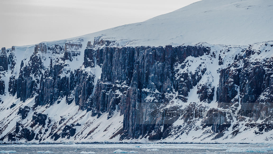 The bird cliff of Alkefjellet in Svalbard
