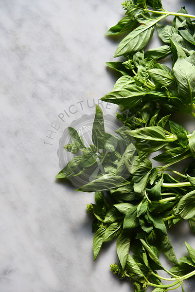 Basil on a worksurface