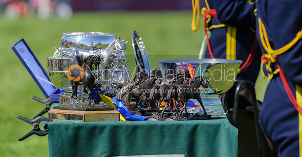The trophies - show jumping phase,  Mitsubishi Motors Badminton Horse Trials, 6th May 2013.