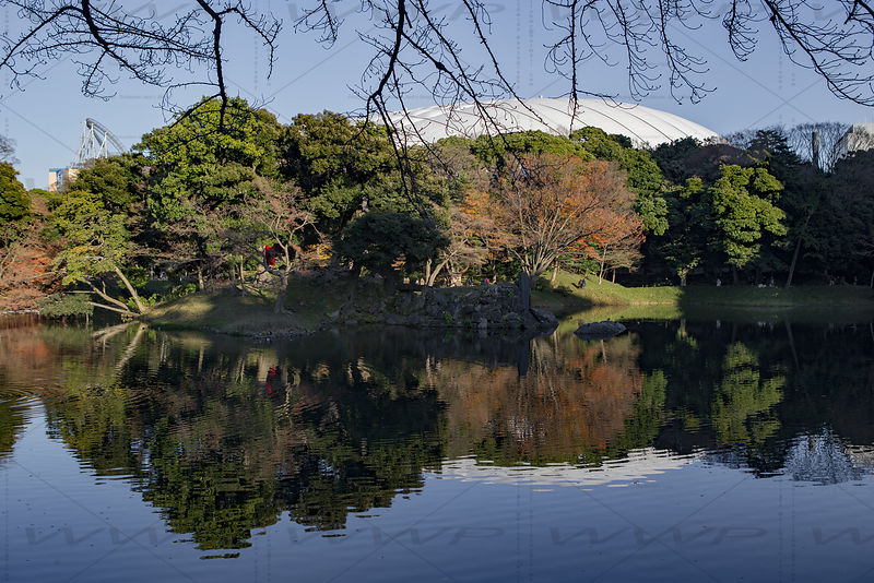 _W_P323-Tokyo-park-pond-Dome-reflection_1