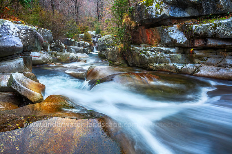 Vicdessos stream - Winter - Pyrenees