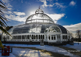 Sunlight and Snow at the Palm House