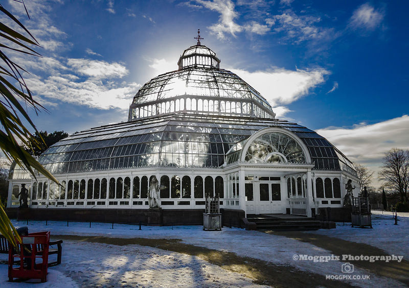 Image Gallery: Sefton Park Palm House  photos