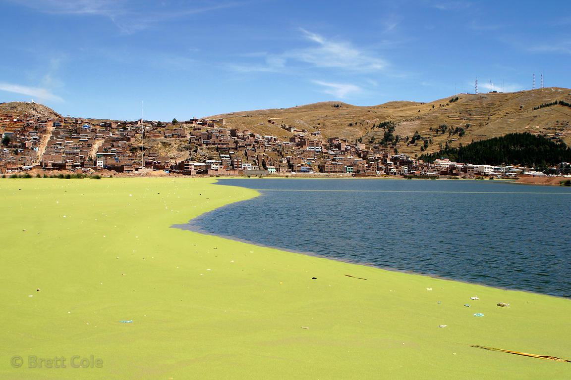 The banks of Lake Titicaca in Puno, Peru. Pollution from this rapidly growing city has fouled the shores, giving rise to a th...