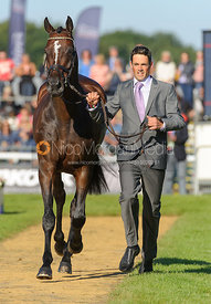 Jonathan Paget and CLIFTON PROMISE - The final vets inspection (trot up),  Land Rover Burghley Horse Trials, 8th September 2013.