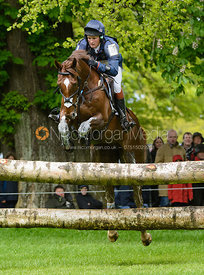 Tom McEwen and DRY OLD PARTY - Cross Country phase, Mitsubishi Motors Badminton Horse Trials 2014
