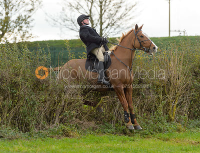 jumping a hedge above Clawson Thorns