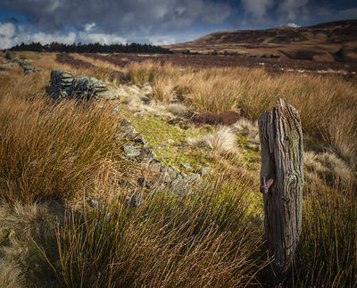 Old gate post below Derwent Edge