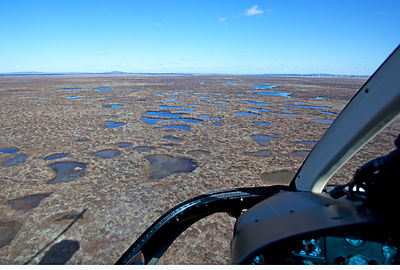Aerial view from helicopter across the Flow Country showing peatland pool system, Forsinard, Caithness, Scotland, UK, May.