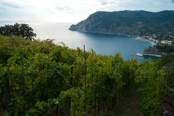 Hiking to Monterrosso al Mare in Cinque Terre