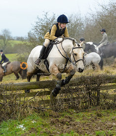 jumping the hunt jump at Newbold - The Fitzwilliam Hunt visit the Cottesmore at Burrough House
