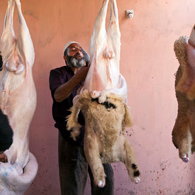 A Muslim butcher ritually slaughters, skins and butchers a sheep in preparation for a wazwan feast, Srinagar