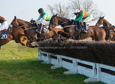 Don't Hang About (J. Hamer) - Belvoir Hunt Point to Point 24/3/12