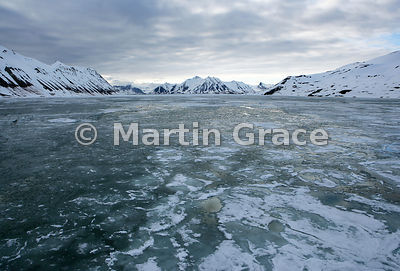 Evening Hornsund landscape with sea ice, Spitsbergen, Svalbard