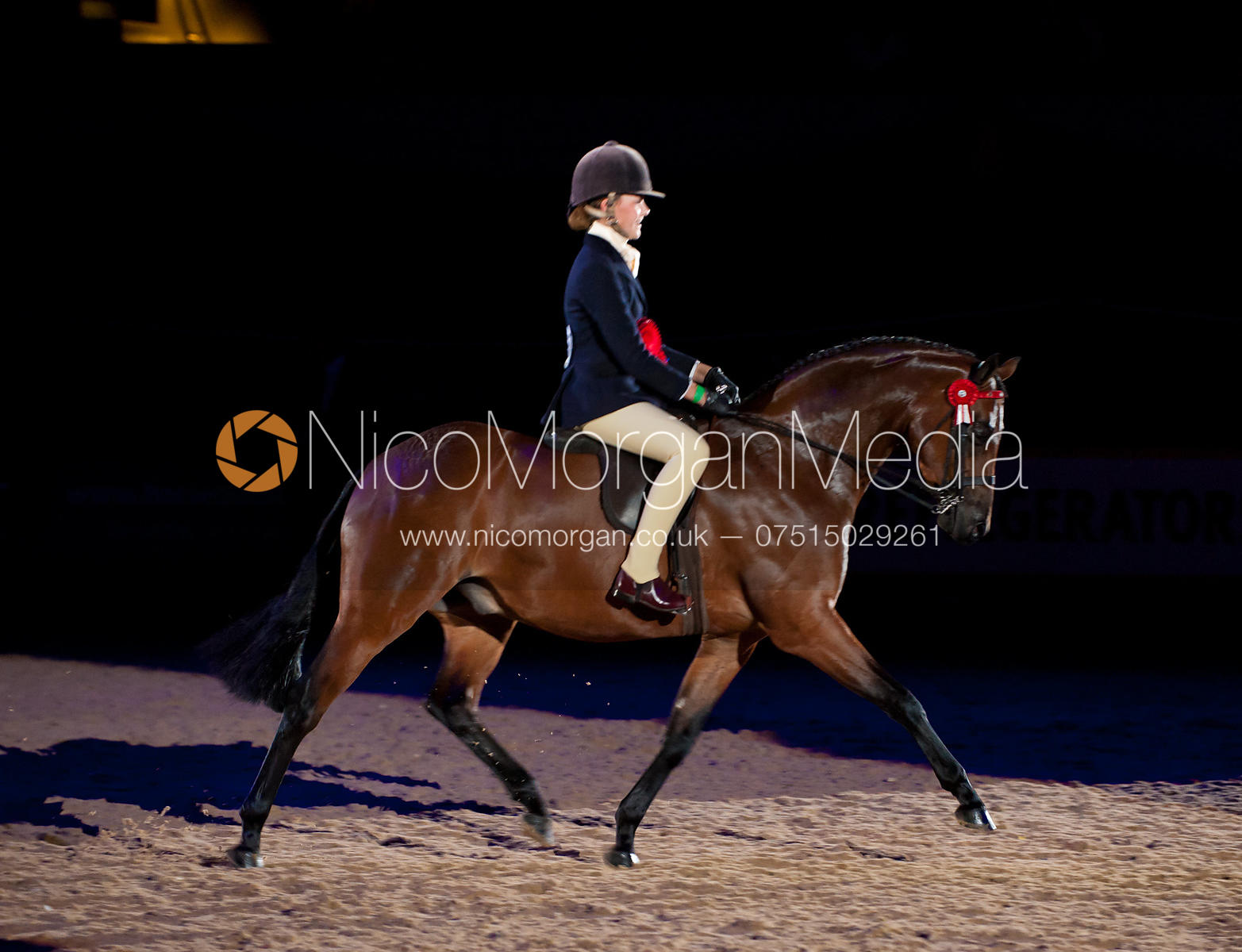 Riding Pony of the Year - HOYS 2011