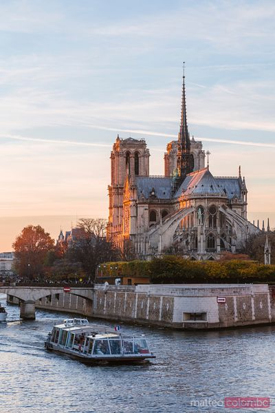 Last light over Notre Dame cathedral, Paris France