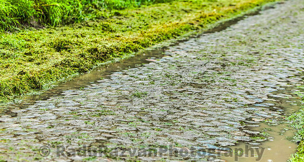 Cobbled Road in a Rainy Day