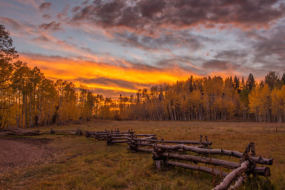 Sunset at True Grit Meadow