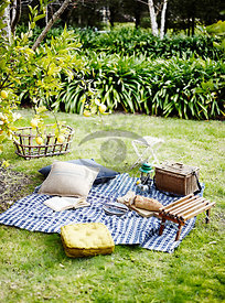 Outdoor Picnic by Cohen
