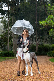 A 4girl with an umbrella and her dog on a rainy day