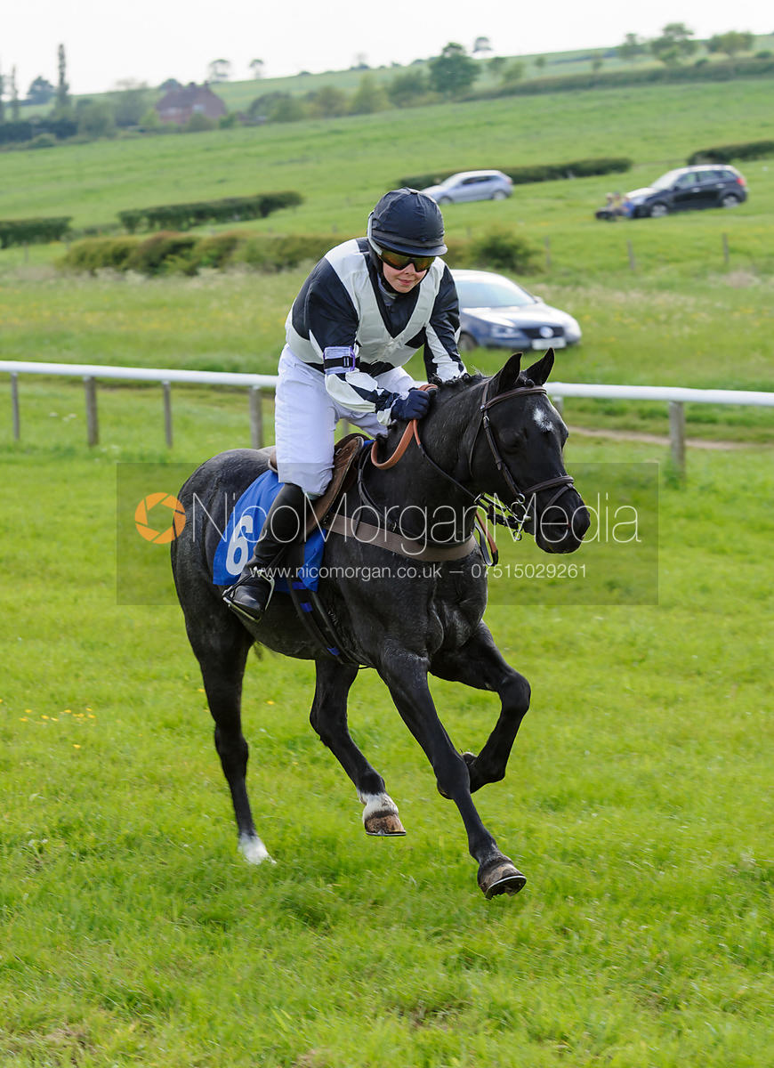 MMSH Pony Race - Pony Racing - Meynell and South Staffs Point to Point 2014