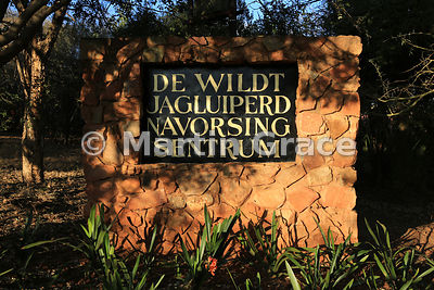 De Wildt Cheetah Centre, Republic of South Africa