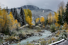 Fall colors around Fitzsimmons creek, Whistler. Photo: Mitch Winton - coastphoto.com