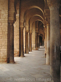 Inside the Grand Mosque's arched colonade, showing some of the Roman columns that were salvaged for its construction, Kairoua...