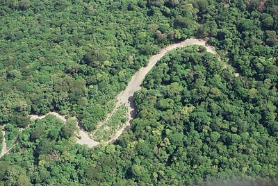 Aerial view of Pacific coast tropical dry forest in dry season, showing course of river during wet season. Santa Rosa Nationa...