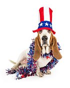 Funny Independence Day Basset Hound