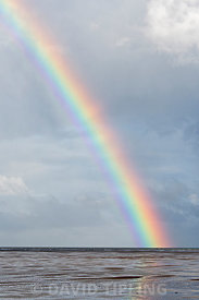 Rainbow off Hoilkham North Norfolk autumn