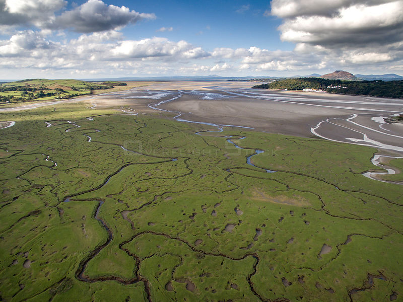 Aerial view of saltmarsh with small meandering drainage tributaries. River Dwyryd estuary and village of Portmeirion in backg...