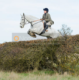 Amy Simes jumping a hedge