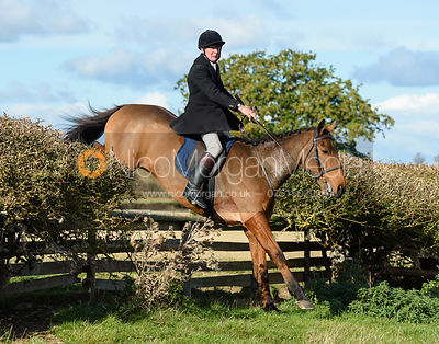 William Bevin jumping a fence at Gartree. Quorn Hunt Opening Meet 2018
