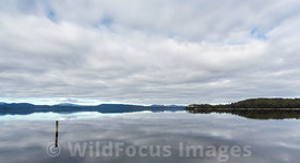Very still water with cloud reflections, Maquarie Harbour, Tasmania, Australia; Landscape
