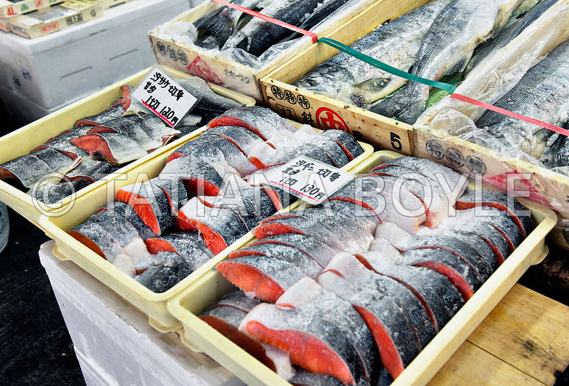 Display with Pacific Salmon