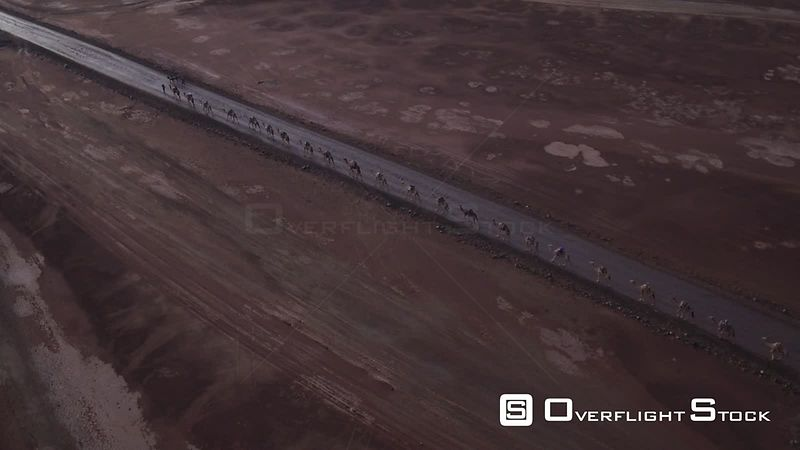Drone Video Ethiopia. Camel Train making it's way along a road.