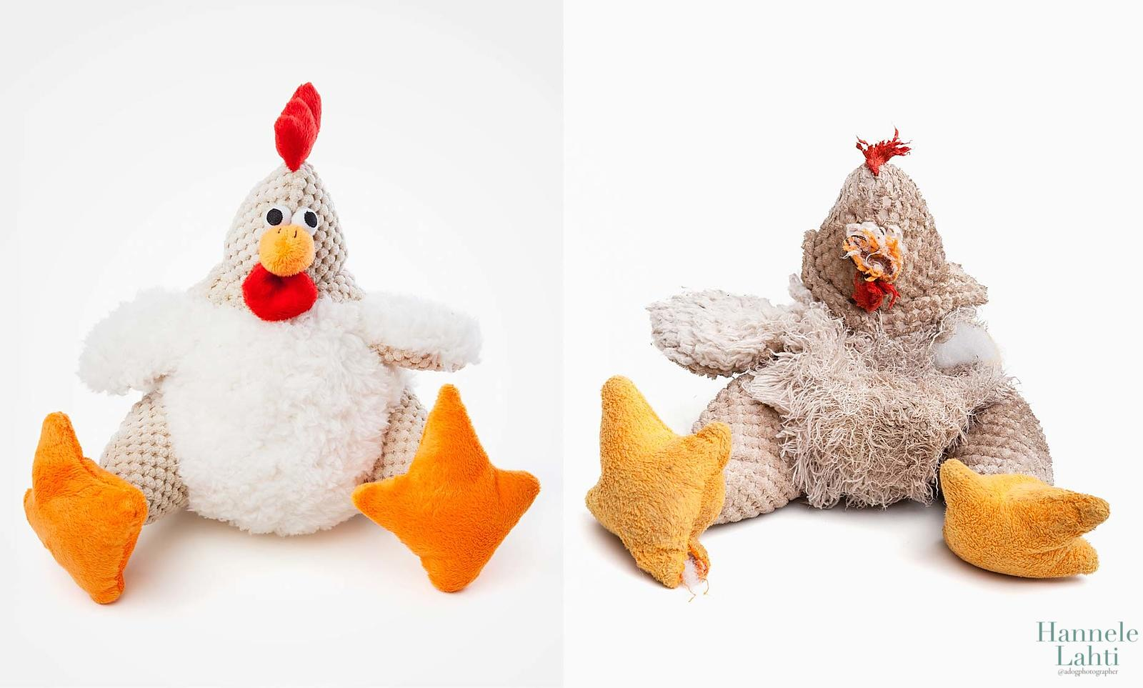 Chicken_Diptych