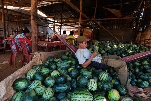 Portrait of a Man on a Cellphone Selling Melons from his Hammock