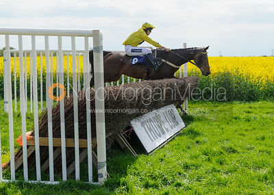 Race 2 Mixed Open - South Notts Point-to-Point 2017