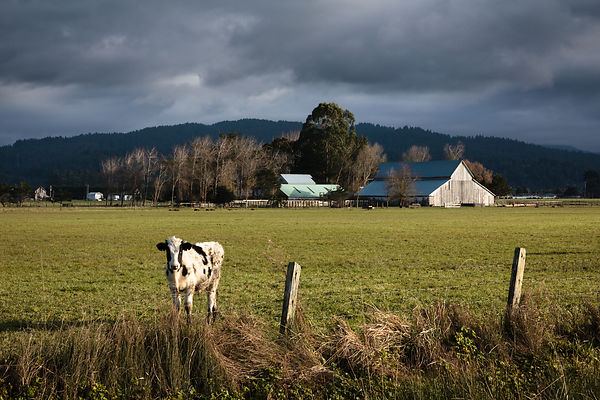 Owen_Roth-January_06_2013-Farm_Lands_Stormbreak_Sunset-5717-00219