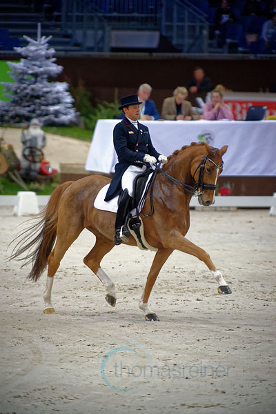 Dressage Freestyle