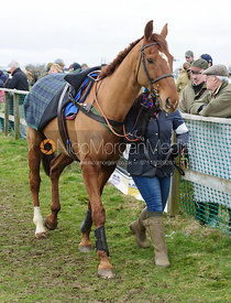collecting ring - Ladies Open - Cottesmore at Garthorpe