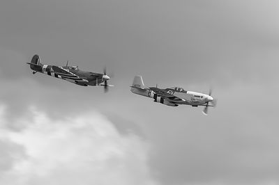 Spitfire and Mustang black and white version