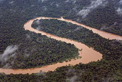 Aerial view of meanders in Rio Yavari, Amazonia, Peru