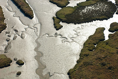 Aerial view of Sado Estuary Nature Reserve at low tide. Portugal, November 2007